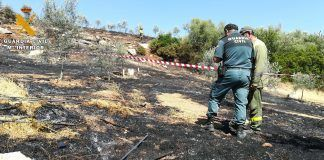 incendio forestal carcabuey guardia civil